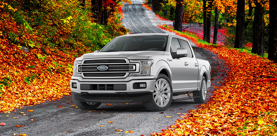 ford service specials in el paso il heller ford service coupons. Black Bedroom Furniture Sets. Home Design Ideas